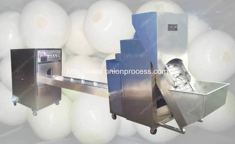 Automatic-Onion-Peeling-and-Root-Cutting-Line