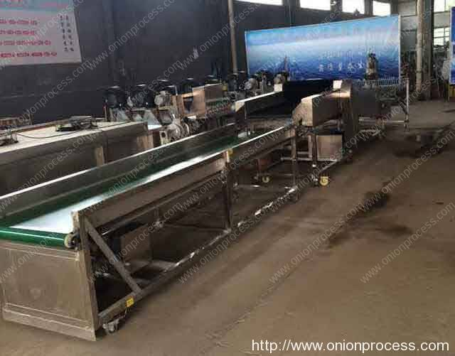 Onion Dry Cleaning Machine
