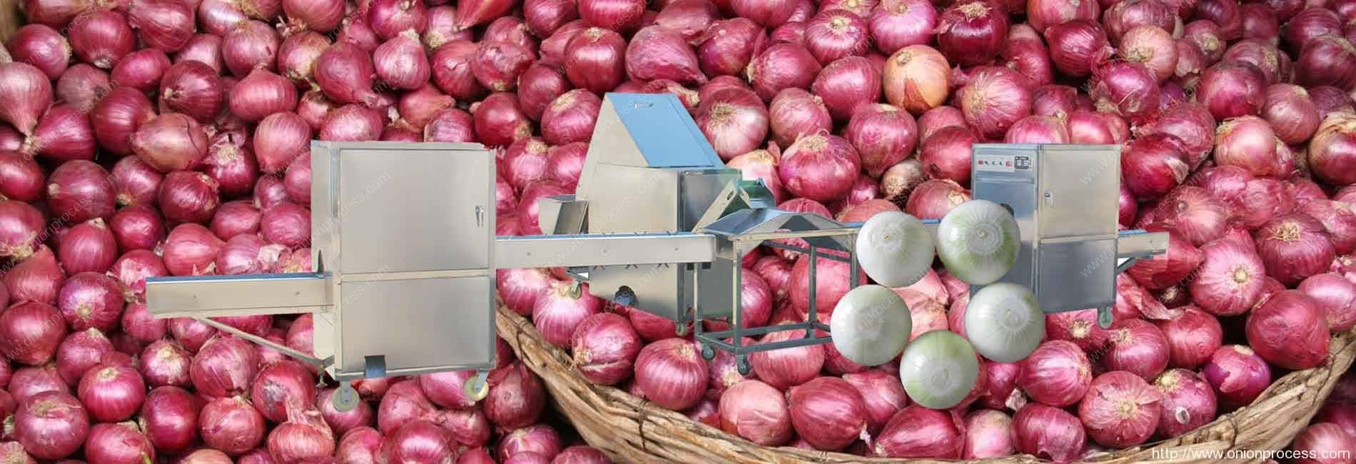 onion-peeling-and-root-cutting-processing-line