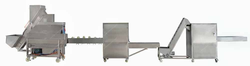 Automatic Onion Peeling, Root Cutting, Slicing Line