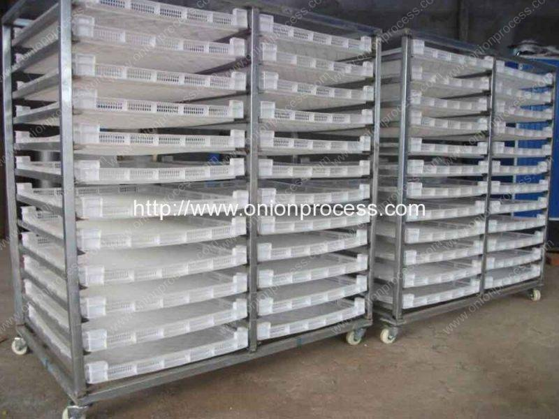 Onion-Hot-Air-Drying-House-for-Large-Quantity-Onion-Dryer-Process