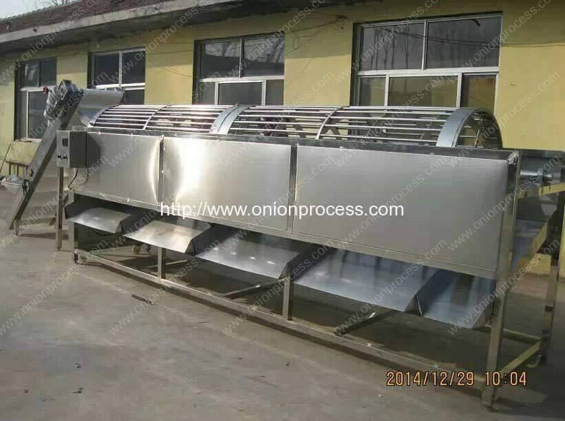 Automatic Onion Size Grader Machine
