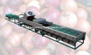 automatic-onion-selecting-brush-dry-cleaning-and-sorting-line