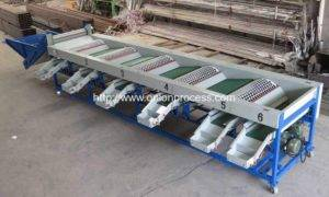 Automatic Onion Size Sorting Machine for Sale