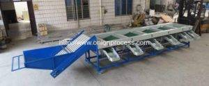 Automatic Onion Sorting Machine with Brush Cleaning Function (4)