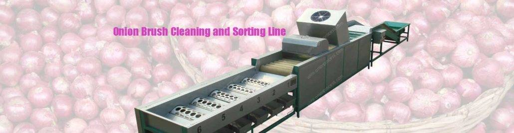 banner5-automatic-onion-cleaning-and-sorting-machine