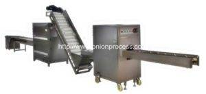 Automatic Onion Root Cutting and Peeling Line