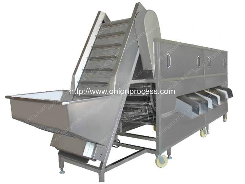 Automatic-Roller-Type-Onion-Sorting-Grading-Machine-Manufacture