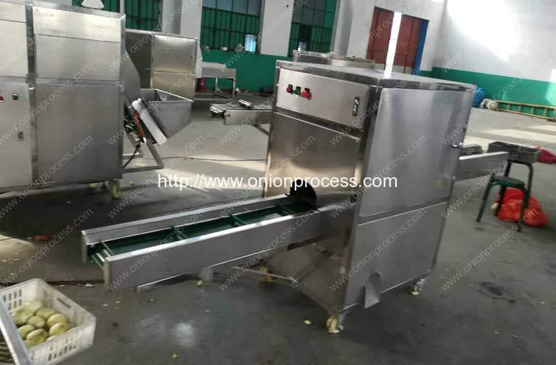Onion-Root-and-Tail-Cutting-Machine-for-Europe-Customer
