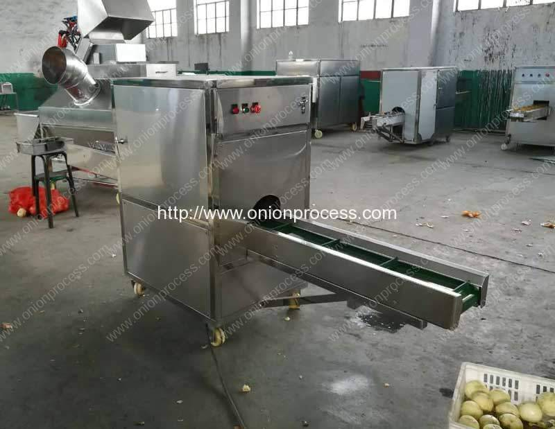 Romiter-Onion-Root-and-Tail-Cutting-Machine-for-Lithuania-Customer
