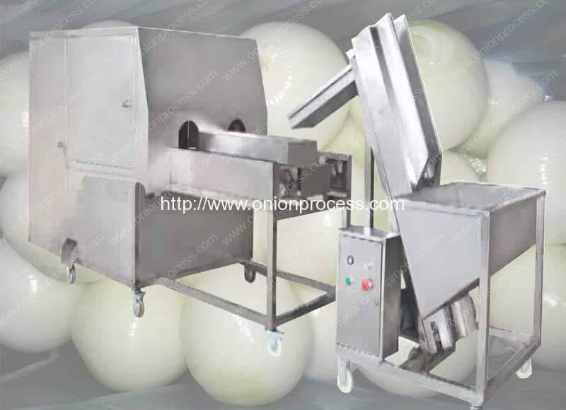 Double-Belt-Onion-Peeling-and-Root-Cutting-Machine-with-Feeding-Elevator