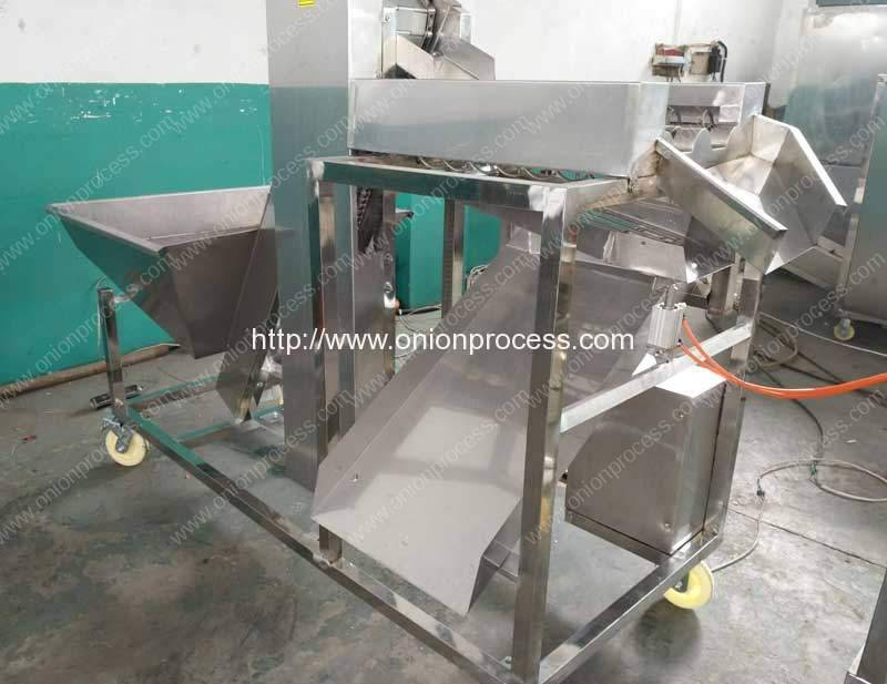 Two Size Onion Size Sorting Machine
