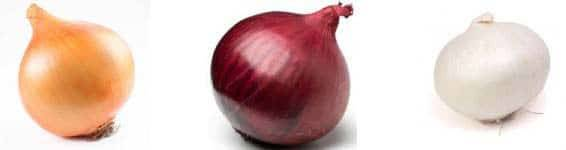 Onions differ in the color in Pakistan