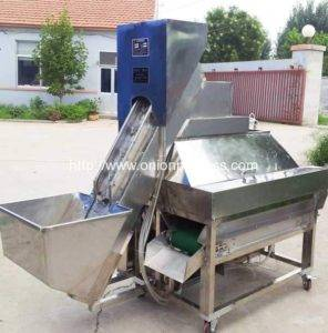 Automatic Single Belt Onion Peeling Machine for Canada Customer