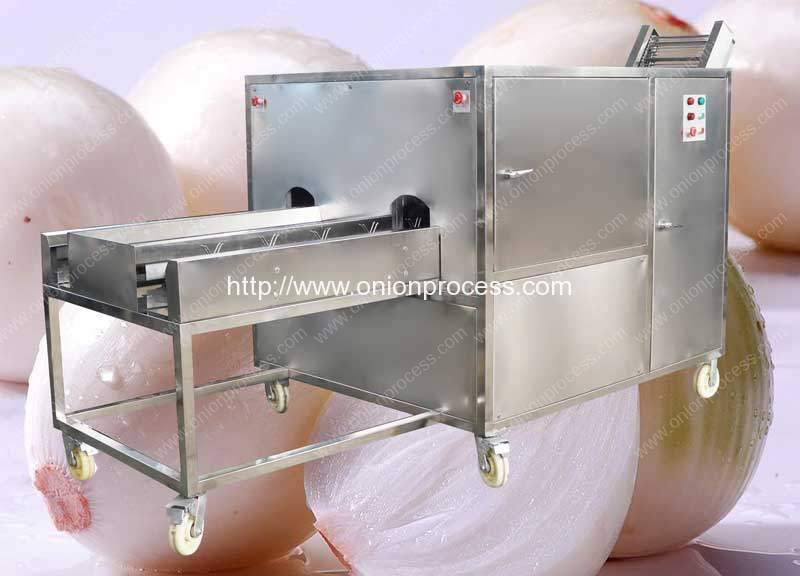 Double Belt Onion Root Cutting Machine for Sale