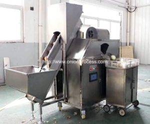 RM-OP1 PLC Control Onion Peeling Machine for Hungary Customer
