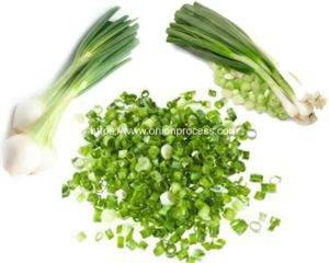 Green-Onion-Introduction