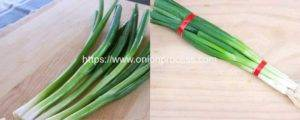 Green-Onion-Review