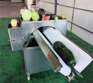 Automatic Onion Half Cutting Machine
