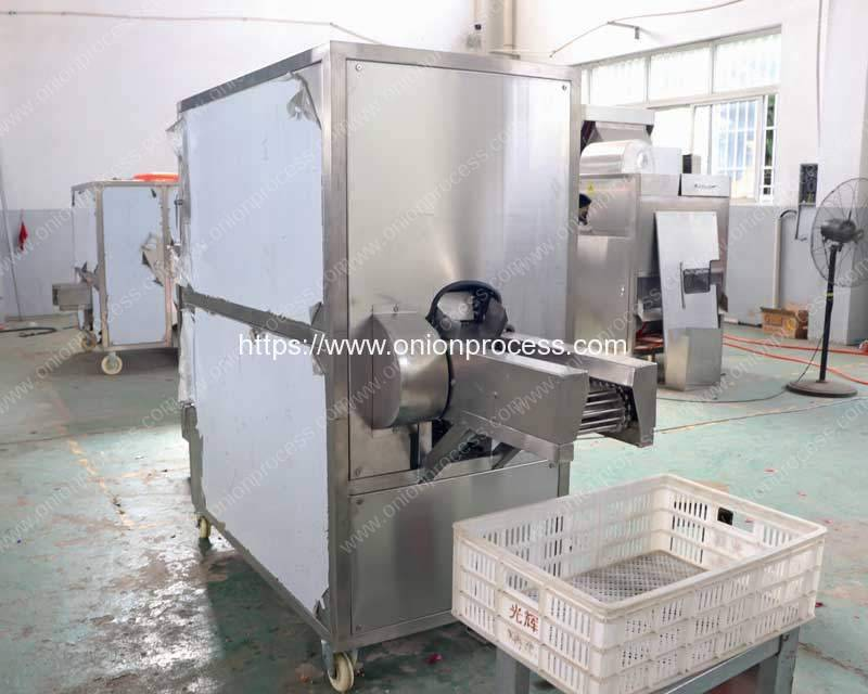 Automatic-Onion-Root-Concave-Cutting-and-Peeling-Machine-for-Macedonia