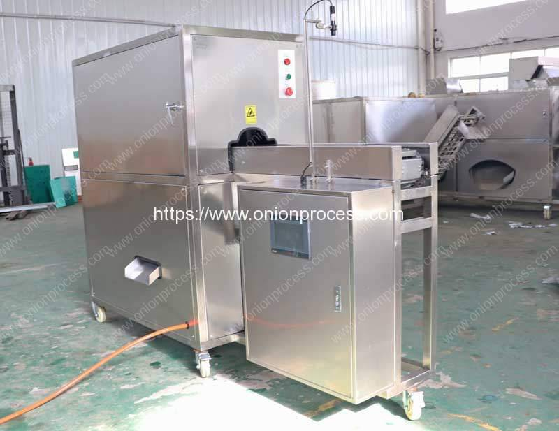Automatic-Onion-Root-Cutting-and-Peeling-Machine-for-Macedonia-Customer