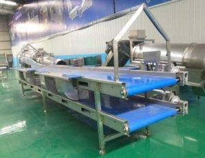 Automatic-Double-Layer-Onion-Selection-Conveyor