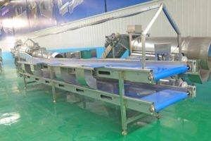 Automatic-Double-Layer-Onion-Selection-Conveyor-with-Lamp-Frame