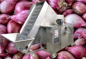 Commerical Shallot Peeling Machine