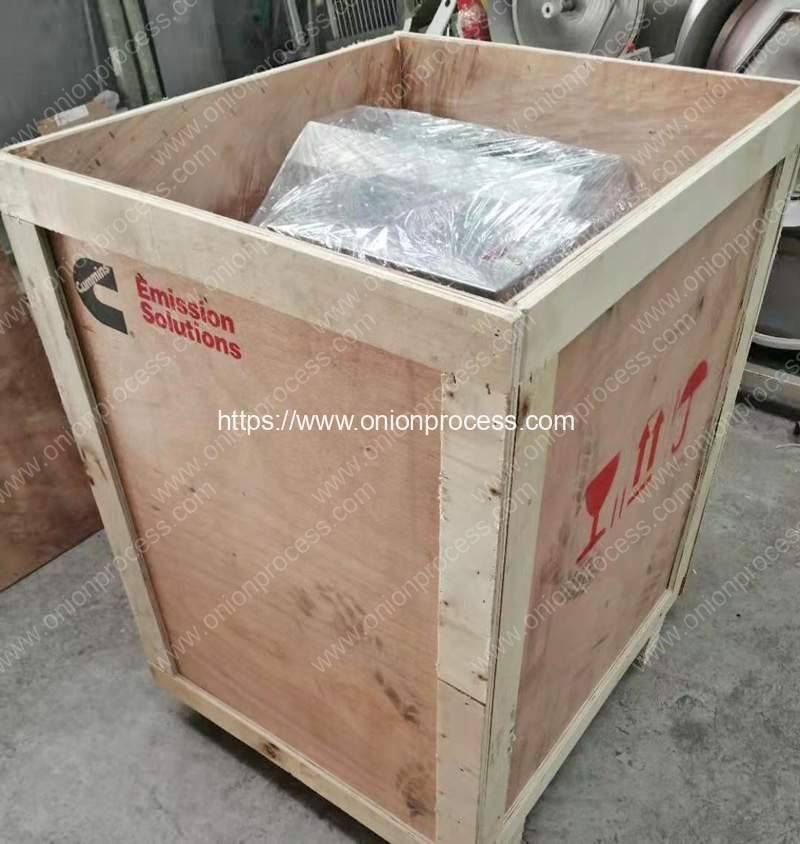 Green-Onion-Root-Cutting-and-Peeling-Machine-Package-for-France-Customer