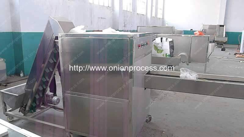 Onion-Cubic-Cutting-Machine-Manufacture-Factory-Visit