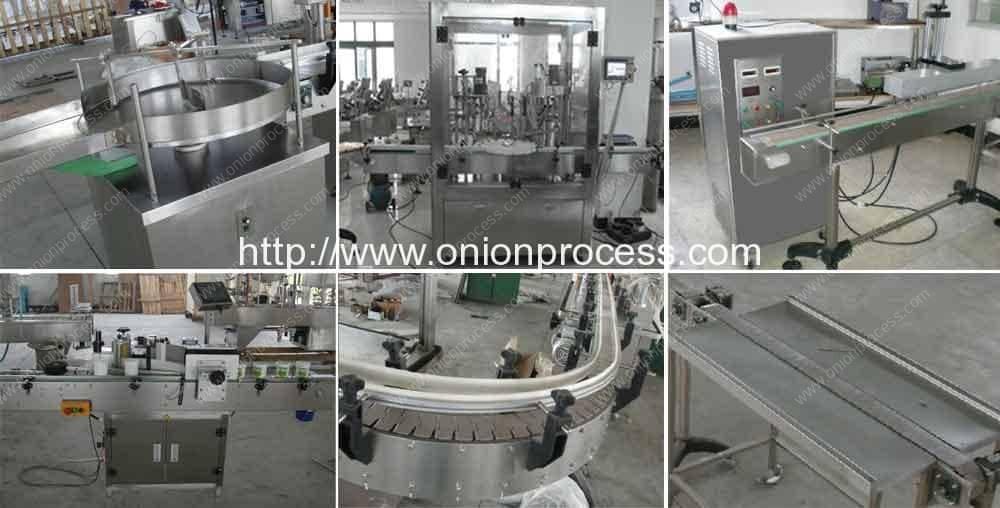Onion-Powder-Bottle-Filling-Capping-Machine