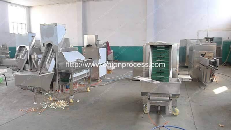 Onion-Processing-Machine-Manufacture-Factory-Visit