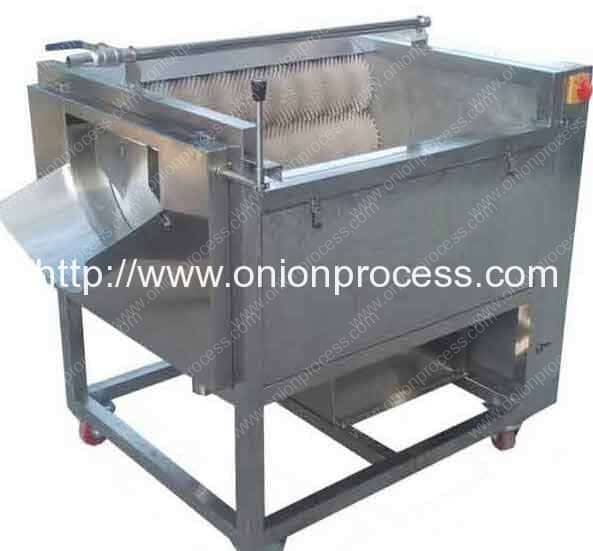 Onion Water Washing Machine