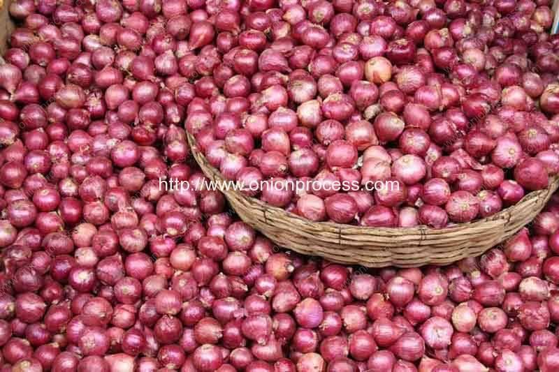 Onions-Health-Benefits-2