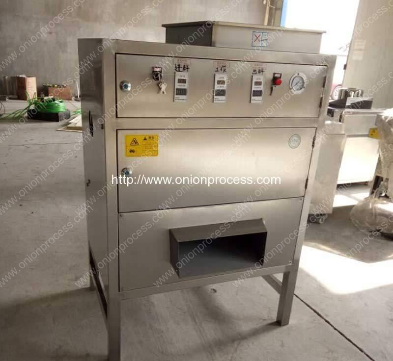 customized-300kgh-onion-peeling-machine-for-malaysia-customer