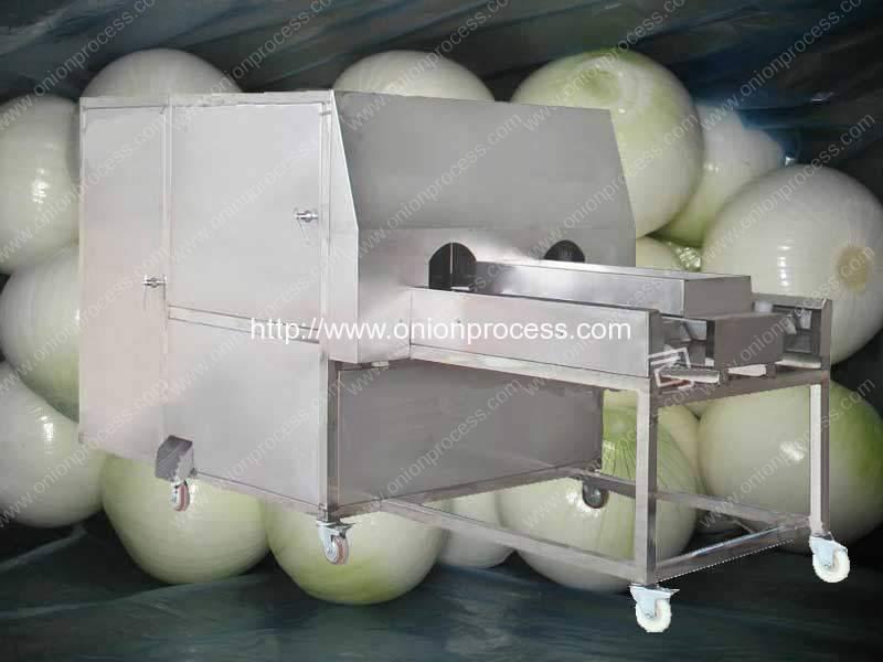 Double Belt Onion Root Cutting Machine