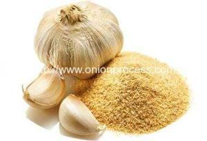 garlic-clove-and-powder