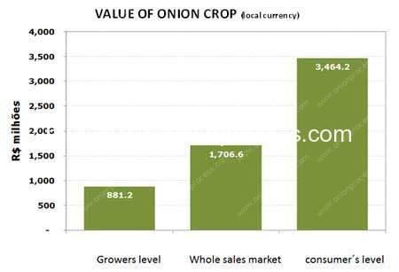 onion-value-in-brasil