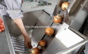 Automatic-Onion-Peeling-Machine-Feeding-Hopper