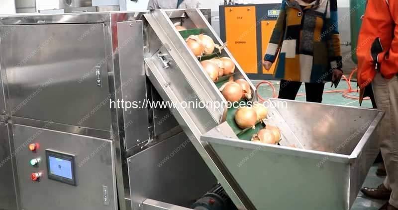 Automatic-Bulk-Type-Onion-Peeling-Machine-without-Surface-Damage