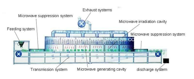 Automatic-Onion-Powder-Microwave-Sterilizer-Machine-Structure-Drawing