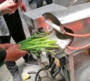 Spring-Onion-Peeling-Cleaning-Machine